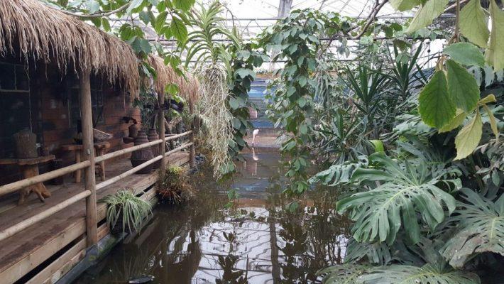 Dierenpark Texel Zoo Oosterend Texel