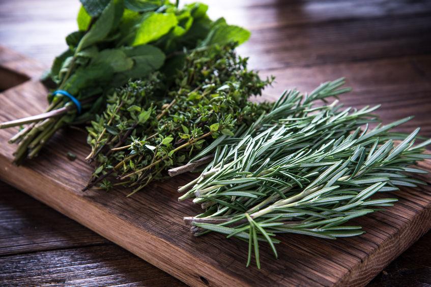 Kruiden kweken in de (moes)tuin + tips