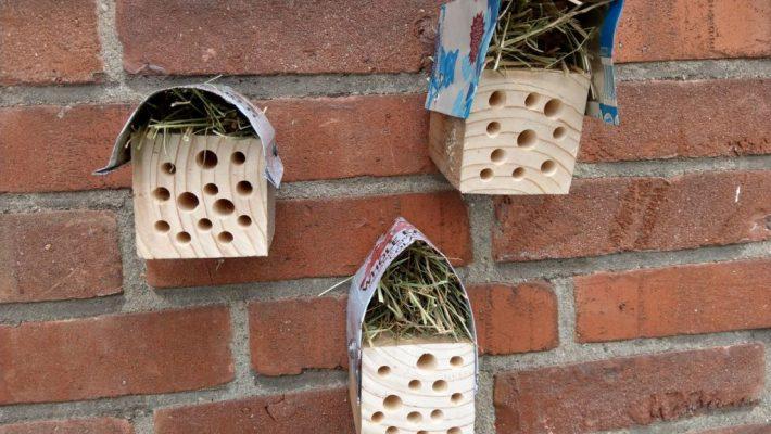 DIY bijenhotel maken en ophangen
