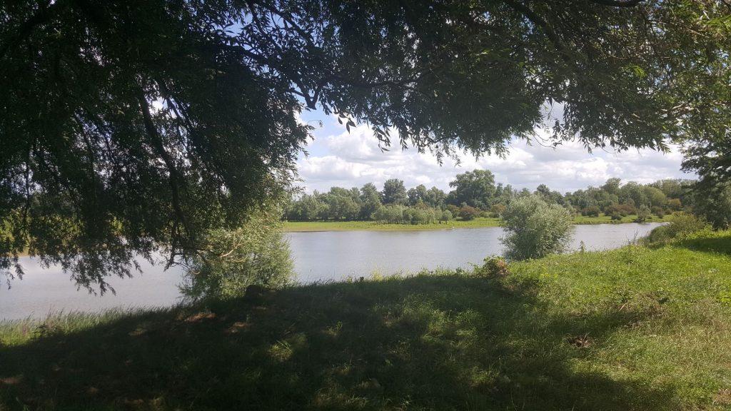 Natuurgebied Blauwe Kamer Wageningen Utrechts Landschap
